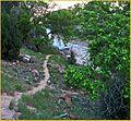 Emerald Pools Trail 4-29-14p (14123754926).jpg