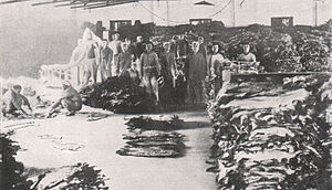 The Wharf (Holdings) - Fur warehouse of The Wharf, before 1912