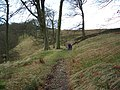 Entering the wood at Red Syke on the way to Lower Fence - geograph.org.uk - 112269.jpg