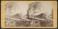 Entrance bridge, from Robert N. Dennis collection of stereoscopic views.png