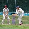 Essex v Wales at Bishop's Stortford, Herts, England, National Over 60s County Championship 056.jpg