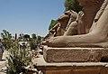 Estatuas de karnak-2007 (5).JPG