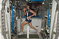 Expedition 32 Flight Engineer Sunita Williams exercises on COLBERT.jpg