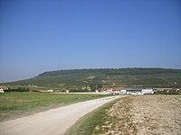 FR-51-Landscape1.JPG