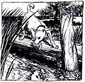 Fable-Esope-Rackham 20.jpg