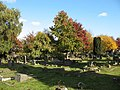 Falconwood Cemetery (2) - geograph.org.uk - 1554601.jpg