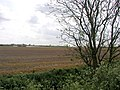 Fallow Field - geograph.org.uk - 170646.jpg