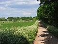 Farm road, Kimpton - geograph.org.uk - 812735.jpg