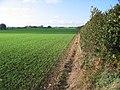 Farmlend SE of Flinton - geograph.org.uk - 72109.jpg