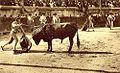 Feria de Nîmes estocade.jpg