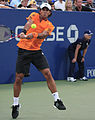 Fernando Verdasco 2009 US Open 2.jpg