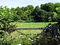 Field near Basildon - geograph.org.uk - 21181.jpg