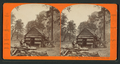 First House in Yosemite Valley, Cal, by Reilly, John James, 1839-1894.png