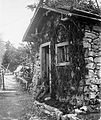 First World War, dog, soldier, men, uniform, garden Fortepan 5336.jpg