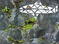 Fish Mosaic and Plants - Retaining Wall along Highway outside Salvador - Brazil.jpg