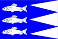 Flag Aš.png