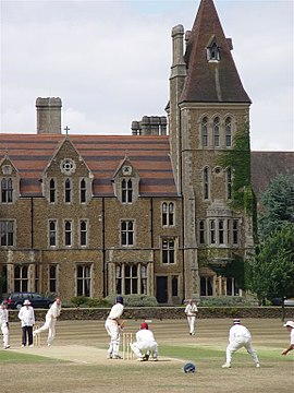 Flamingo's aan bat - Charterhouse School, 1 augustus 2006.jpg