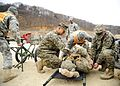Fleet Antiterrorism Security Team Pacific participates in Army mass casualty exercise 120305-N-SD300-175.jpg
