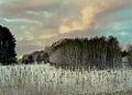 Flickr - Per Ola Wiberg ~ mostly away - Landscape in wintertime.jpg