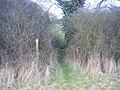 Footbridge at Banister's Meadow Farm - geograph.org.uk - 107998.jpg
