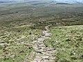 Footpath down Little Ingleborough - geograph.org.uk - 1490072.jpg