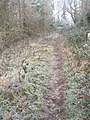 Footpath from Woodbury Lane to The Sling - geograph.org.uk - 1119894.jpg