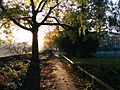 Footpath in Richmond, Surrey - UK.jpg