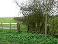Footpath near powerlines, east of Abbots Morton - geograph.org.uk - 748712.jpg