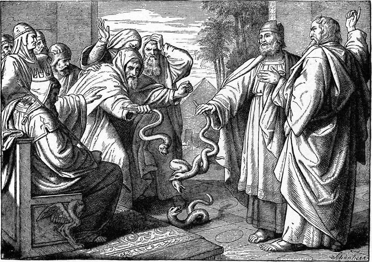 Image Result For Pilgrim King Coloring