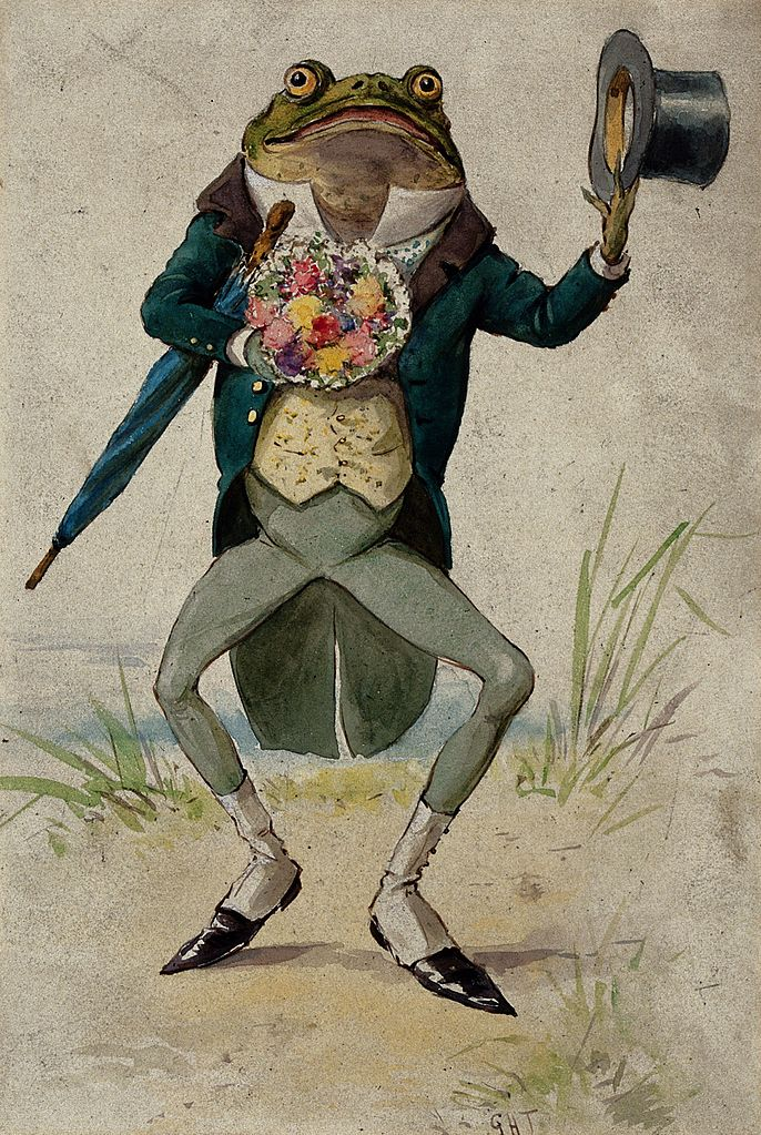 File Frog Dressed As Gentleman With Flowers Top Hat And