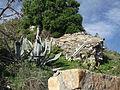 Fuerte Punta Carnero (1).JPG