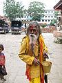 Gai Jatra Kathmandu Nepal (5116726464).jpg