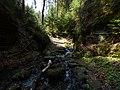 Gelobtbachtal, údolí Klopotského potoka - panoramio (8).jpg