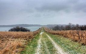 Gfp-illinois-shabbona-lake-state-park-hiking-trail-towards-lake.jpg