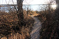 Gfp-wisconsin-pike-lake-state-park-trail-into-lake.jpg