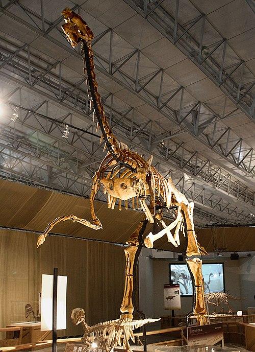 500px-Gigantoraptor.jpg