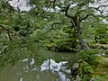 Ginkakuji, Kyoto, Kyoto Prefecture, Japan - panoramio (3).jpg