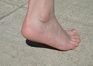 a girl's heel