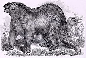 Kentish ragstone - Goodrich Iguanodon