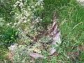 Grób z epoki żelaza koło Saltuny - panoramio.jpg