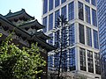 HK CWB Summer 銅鑼灣道 Tung Lo Wan Road 聖馬利亞堂 St Mary's Church St Paul's Hospital tree.JPG