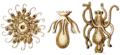 Haeckel Tubulariae-detail5-6-7.png