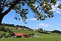 Halblech, Germany - panoramio (18).jpg
