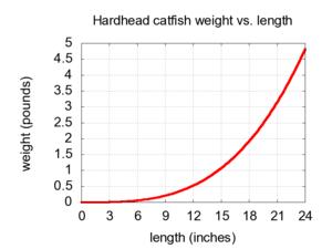Hardhead catfish -  thumb