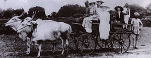 Charles Hardinge, 1st Baron Hardinge of Penshurst - Hardinge family members in ox-cart in Hyderabad State (1911, attending the coronation of Asaf Jah VII)