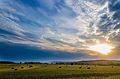 Haymaking in Bashkortostan.jpg