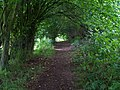 Hazel Tunnel - geograph.org.uk - 1405289.jpg