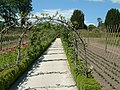 Heligan apple arches.jpg