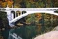 Henry Thompson Bridge in Concrete, WA.jpg