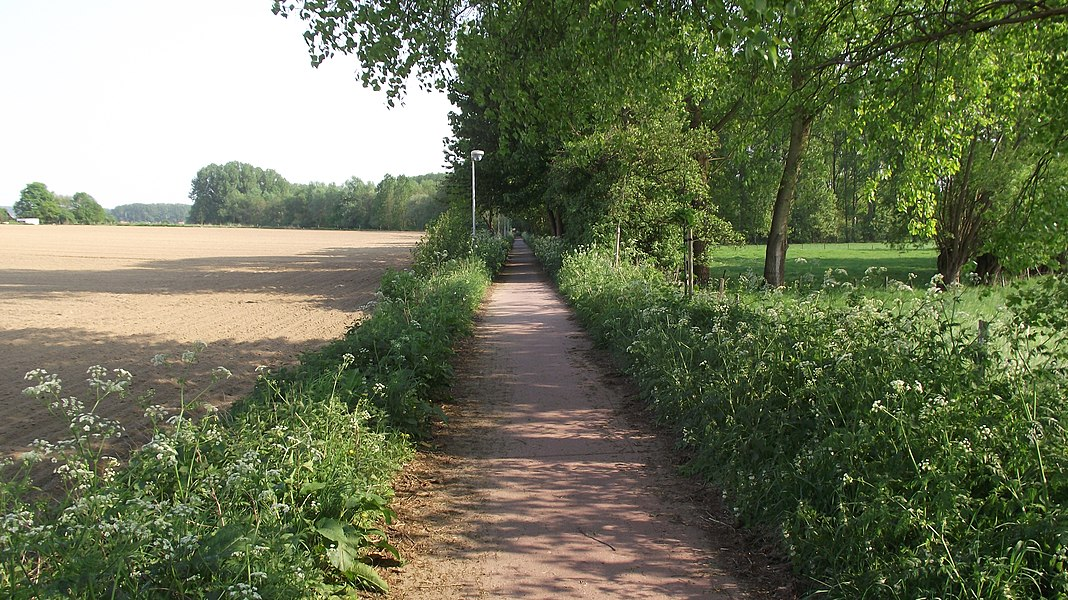 Cycle path to Herzele from Sint-Lievens-Houte. This is the old vicinal railway route.